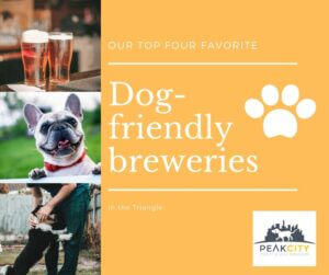 Top Dog Friendly Breweries