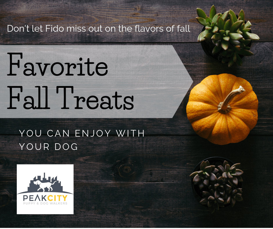 Fall Dog Treats